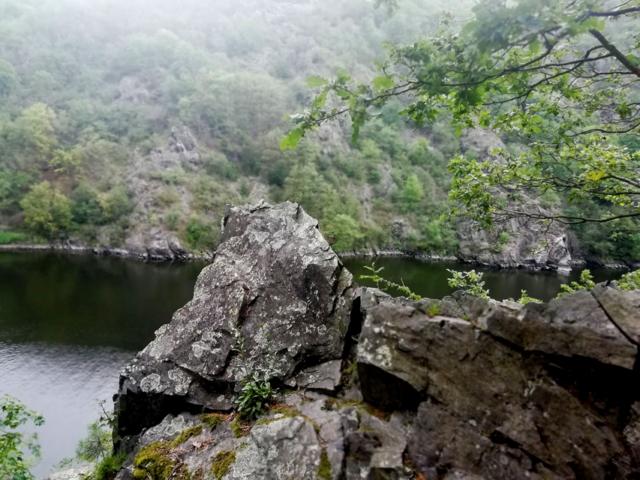 St. John's Currents Nature Trail along the Vltava River