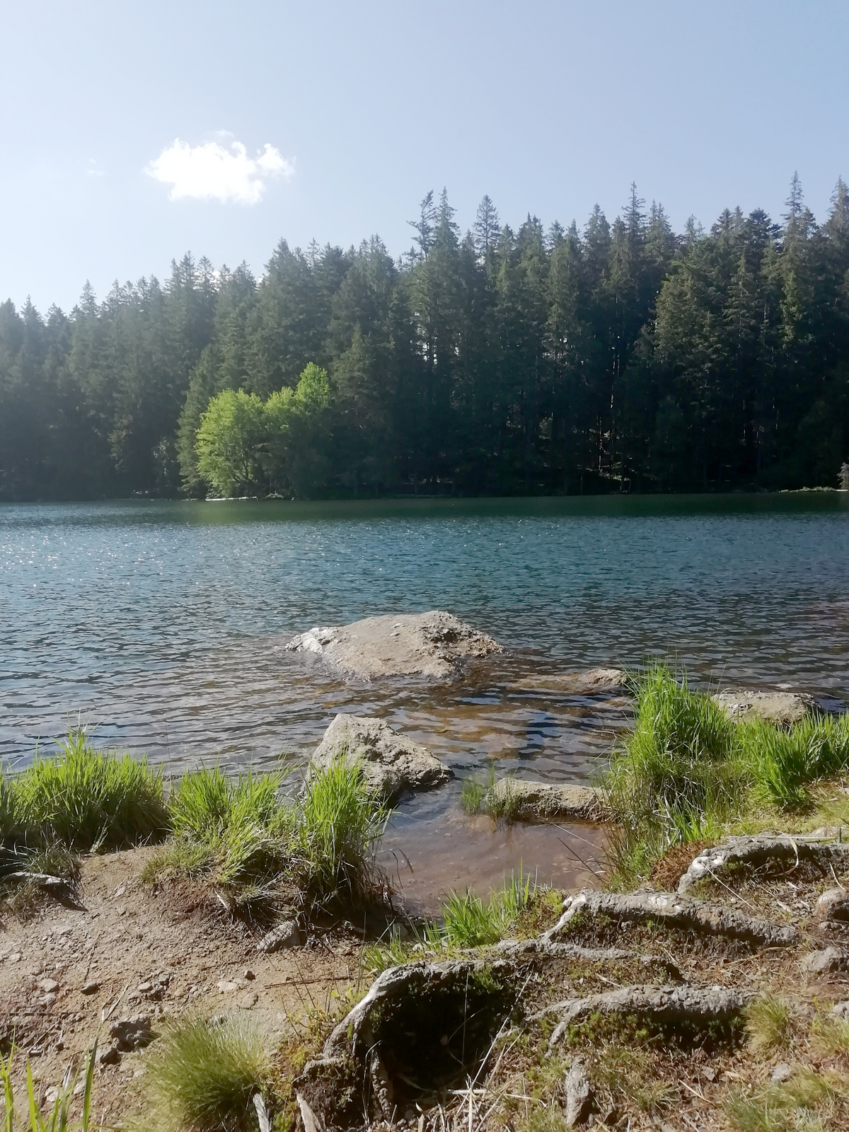 black-lake-Sumava