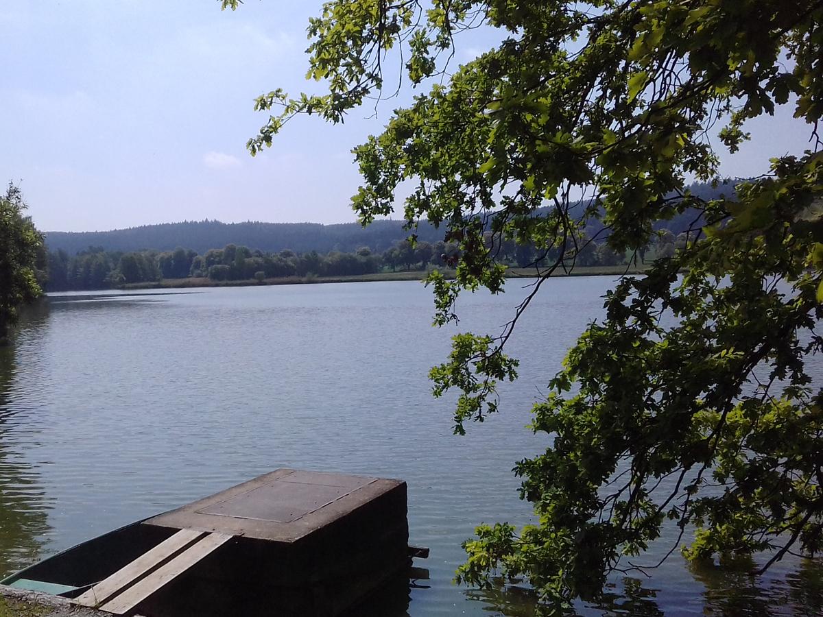Krtiny pond